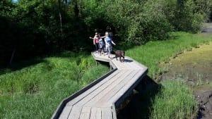 Children's walking on the wooden bridge
