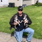 Man with two little dogs
